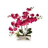 Planta Decorativa Lore Pm-4935113