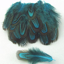 Penas Plumas Azuis Azul Faisão Lote Com 10 Unidades