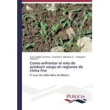 Libro Como Enfrentar El Reto De Producir Sorgo En Regiones D