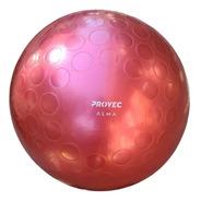 Pelota Pilates 65 Cm Yoga Para Esferodinamia Gym Alma Proyec