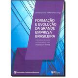 Formação E Evolução Da Grande Empresa Brasileira: Estudo