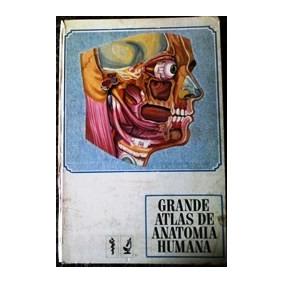 Grande Atlas De Anatomia Humana Mario Natal