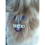 Placa Indentificador De Mascota: Perro Gato, Personalizados