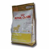 Alimento Balanceado Royal Canin Poodle 33 Caniche Jr X2,5kg