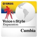 Expansion De Sonido Para Yamaha Psr-s970 --cumbia Latina--