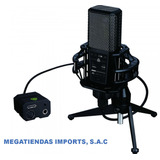 Micrófono Condensador Para Estudio Lewitt Audio Usb Dgt 650
