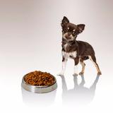 Comida Para Perros Adultos Sb Premium 7,5 Kg