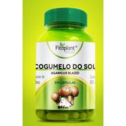 Cogumelo Do Sol 60 Cápsulas 500mg Caixa 12 Potes Premiun Original   Antioxidante