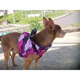 Paseador Para Perros Paseos Entrenamiento - Sr. Cachorro
