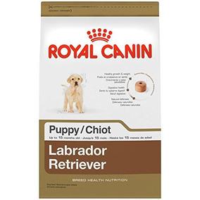 Royal Canin Raza De Salud Nutrición Labrador Retriever Comid