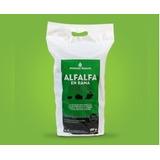 Alfalfa En Rama Mega Pack 500gr