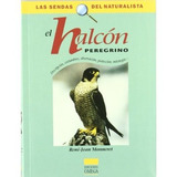Halcon Preregrino; Rene-jean Monneret Envío Gratis