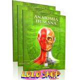 Tratado De Anatomía Humana Fernando Quiroz 3 Tomos