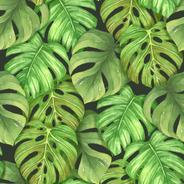 Papel De Parede Adesivo Folhas Verdes Realistas N03092 Rolo