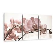 Quadro Flores Orquídeas Bege Para Sala Recepção Canvas