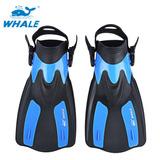 Tamaño Xl Whale Snorkel Buceo Aletas De Natación Caminata