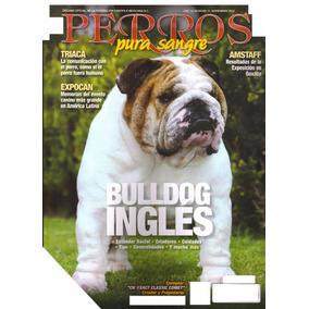 Revista De Perros Pura Sangre El Bulldog Ingles Nov 2012