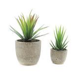 Plantas Velener Mini Decoración Del Hogar Artificiales Aloe