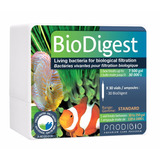Prodibio Biodigest 20 Bilhões Bacterias Vivas 1 Ampola