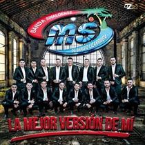 Cd La Mejor Version De Mi Banda Sinaloense Ms De Sergio L.