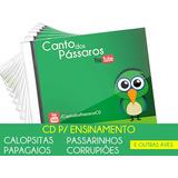 Cd P/ Ensinamento De Calopsitas, Papagaios E Passarinhos
