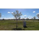 Lote En Haras Del Sur Ill Golf Y Spa - Ruta 2 Km 73