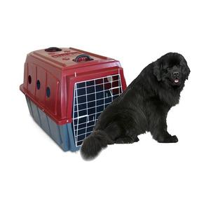 Caixa De Transporte Para Cães Grandes Plastkão Num. 05