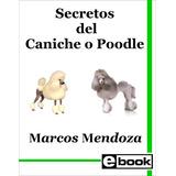 Poodle - Libro Adiestramiento Cachorro Adulto Crianza