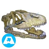 Adorno De Resina Cabeza De Dinosaurio Importado