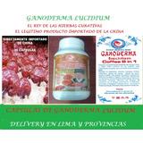 Ganoderma Lucidium En Capsulas Importadas De China Ganoderma