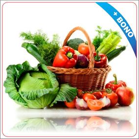 Asesoramiento Siembra Cultivo Hortalizas Frutas Y Granos