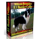Libro Electrónico El Border Collie Adiestramiento Y Más.