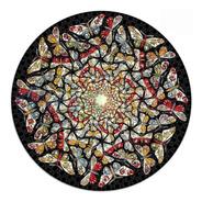 Rompecabezas Mandala Mariposas, 500 Piezas