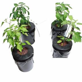 Sistema Hidroponico Dwc 4 Plantas Fresa Jitomate Chile
