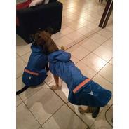 Piloto Impermeable Para Perros Con Capucha ( Medium)
