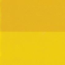 Gustavo Cerati - Amor Amarillo (2 Vinilos)