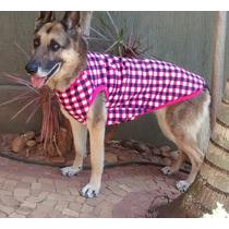 Roupa Para Cães Grande Porte Tam. 4xgg - Diversas Estampas!!