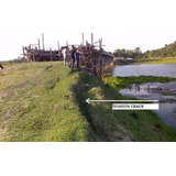 Plantin Vetiver Inundaciones Napa Saturada Estanco Agua