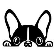 Adesivo De Parede - Bulldog Francês Cachorro Cão Amigo Pet