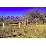 Lote En Venta En Cerro De Oro Despertar Del Valle Alambrado