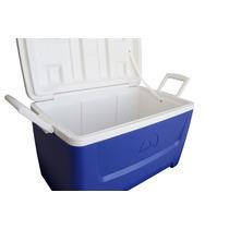 Caixa Cooler Termico Igloo 45 Litros 48qt Ntk