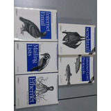 Paquete De Libros O