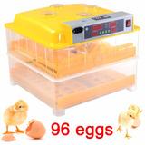 Incubadora Pollos Volteador 96 Huevos Automatica Msi