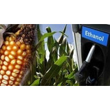 Combustible Chimenea Samovar Bioetanol Alcohol Etanol Galon