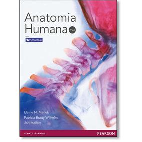 Ebook Anatomia Humana 7ª Edição Elaine Marieb 100% Original