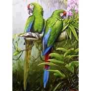 Pintura Numerada Araras Tropicais_p2