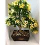 Bonsai Artificial Nuevo Con Flores Amarillas De 35 Ctms