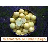 Sementes De Limão Galego Para Mudas