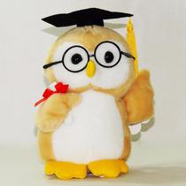 Coruja De Pelúcia Estudante Formatura Diploma Universitária
