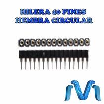 Pinera Hembra De 40 Pines Header Hembra Circular